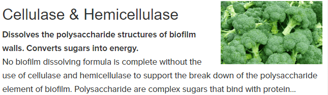 Cellulase Hemicellulase